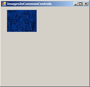 Add image to Label and set ImageAlign to MiddleRight