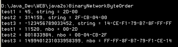 Binary Network Byte Order