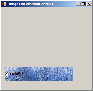 Load image to RadioButton