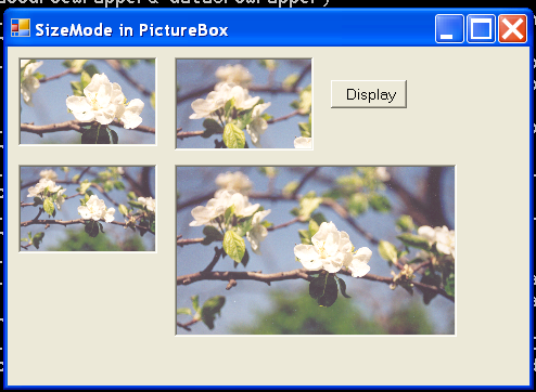 PictureBox Demo