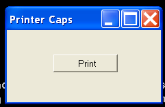 Printer Caps 2