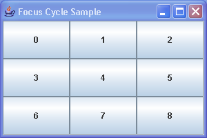 Focus Cycle Sample