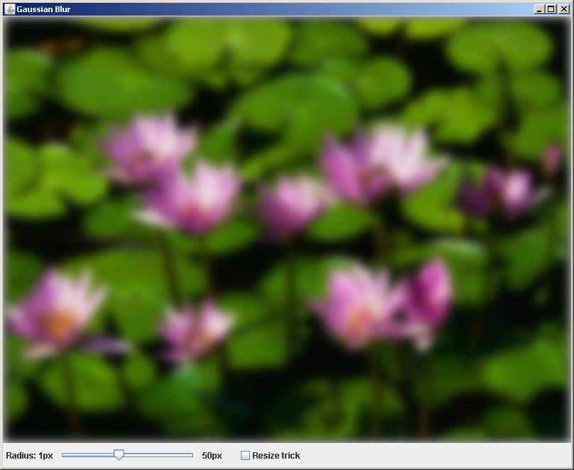 Gaussian Blur Demo : Image « Advanced Graphics « Java