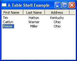 Table Example : Table « SWT JFace Eclipse « Java