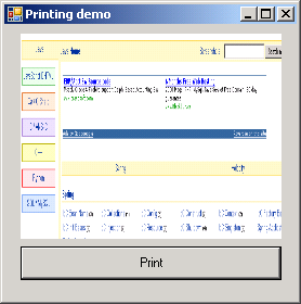 Assign Bmp file to a Print Document