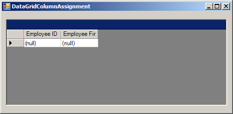 DataGrid Column Asssignment for data binding