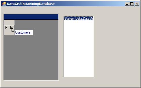 Data Binding: DataGrid