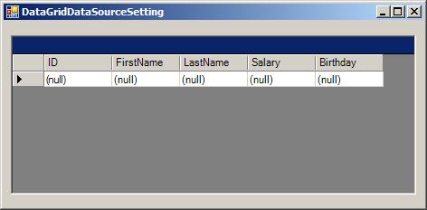 DataGrid DataSource Setting