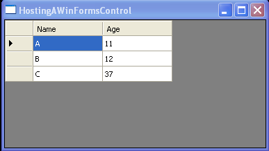 WPF Data Grid View And Resource