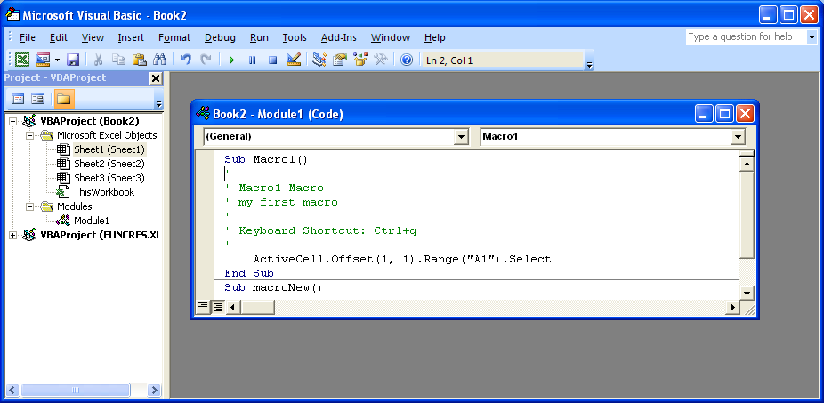 Click the Module window containing the Visual Basic code.