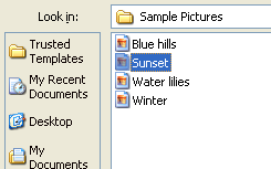 Then click the file on the File Open dialog box