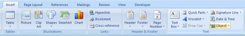 Click Insert Object button.