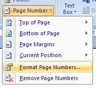 Then click Format Page Numbers.