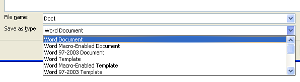 Then click the specific file format you want in 'Save as' file dialog box.